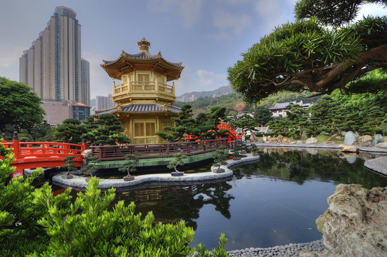 、中華人民共和国、香港、公園、池、パゴダ、Nan Lian Garden、、自然、都市