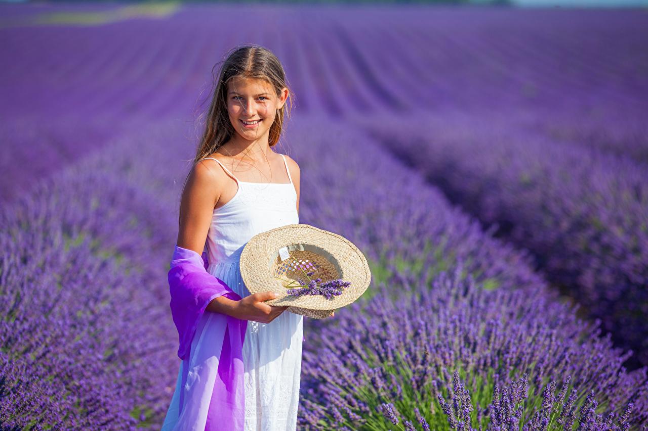 Fotos von Kleine Mädchen Lächeln kind Der Hut Felder Lavendel Kinder Acker
