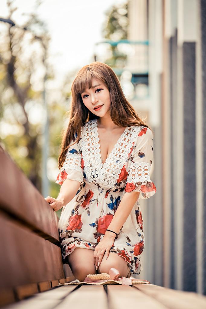 Asiatique Bokeh Banc S'asseyant Les robes Aux cheveux bruns jeune femme, jeunes femmes, asiatiques, assise, assis, assises, arrière-plan flou Filles pour Téléphone mobile