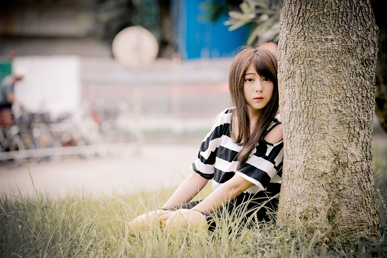 Images Brown haired Bokeh female Asian sit Grass Staring blurred background Girls young woman Asiatic Sitting Glance