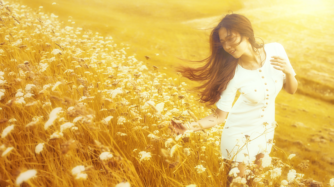 Images Brown haired blurred background Girls Asiatic Grass Dress Bokeh female young woman Asian gown frock