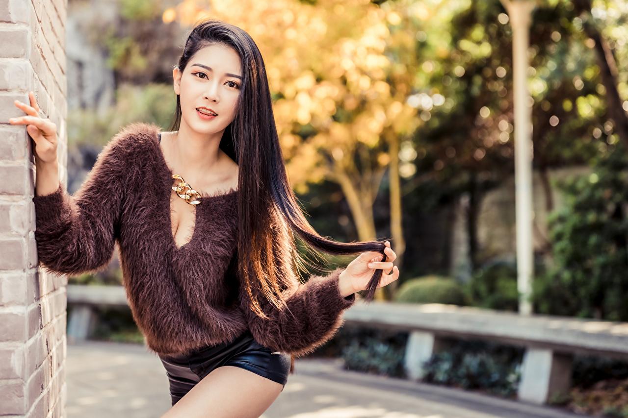 Desktop Hintergrundbilder Bokeh posiert junge frau Asiatische Sweatshirt Shorts Starren unscharfer Hintergrund Pose Mädchens junge Frauen Asiaten asiatisches Blick