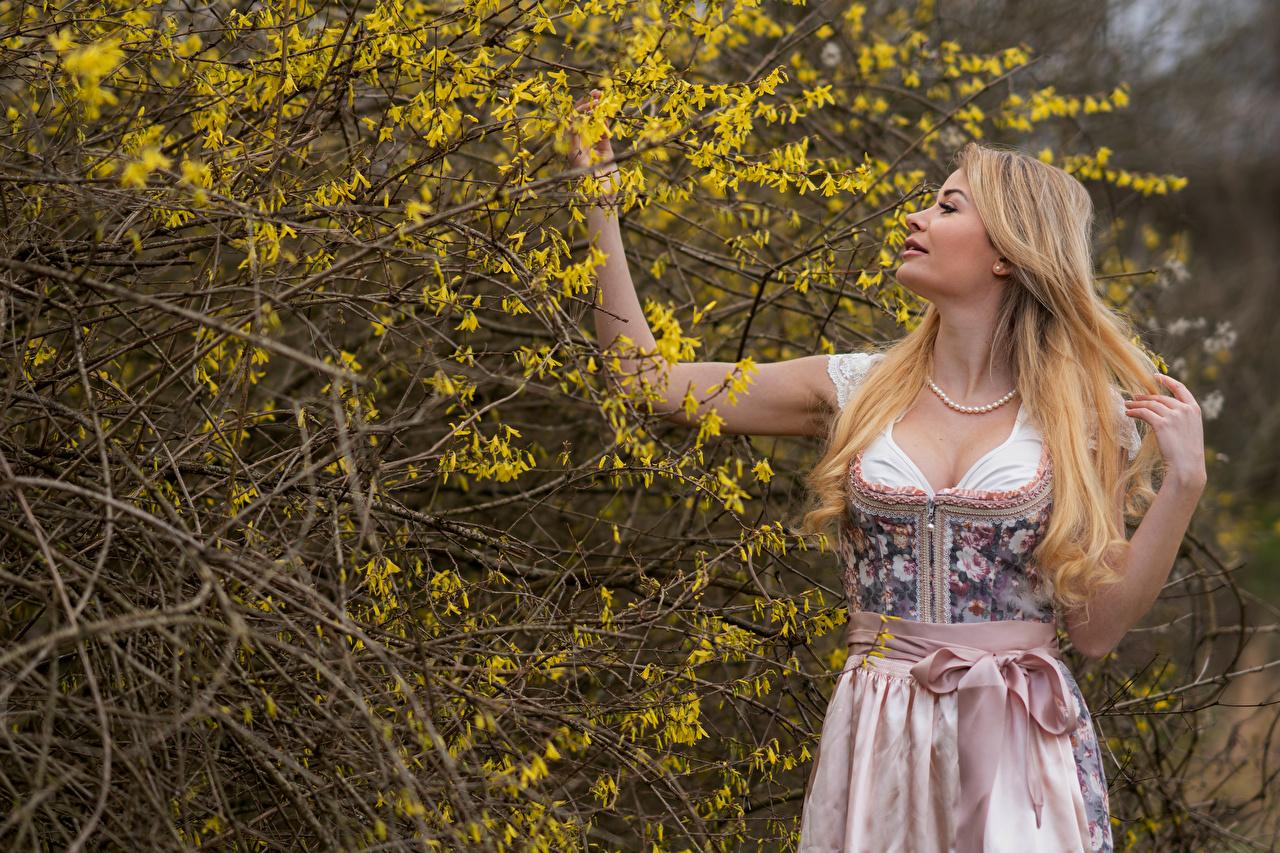 Foto Blondine Doris Haar Mädchens Ast Hand Kleid Blühende Bäume Blond Mädchen junge frau junge Frauen