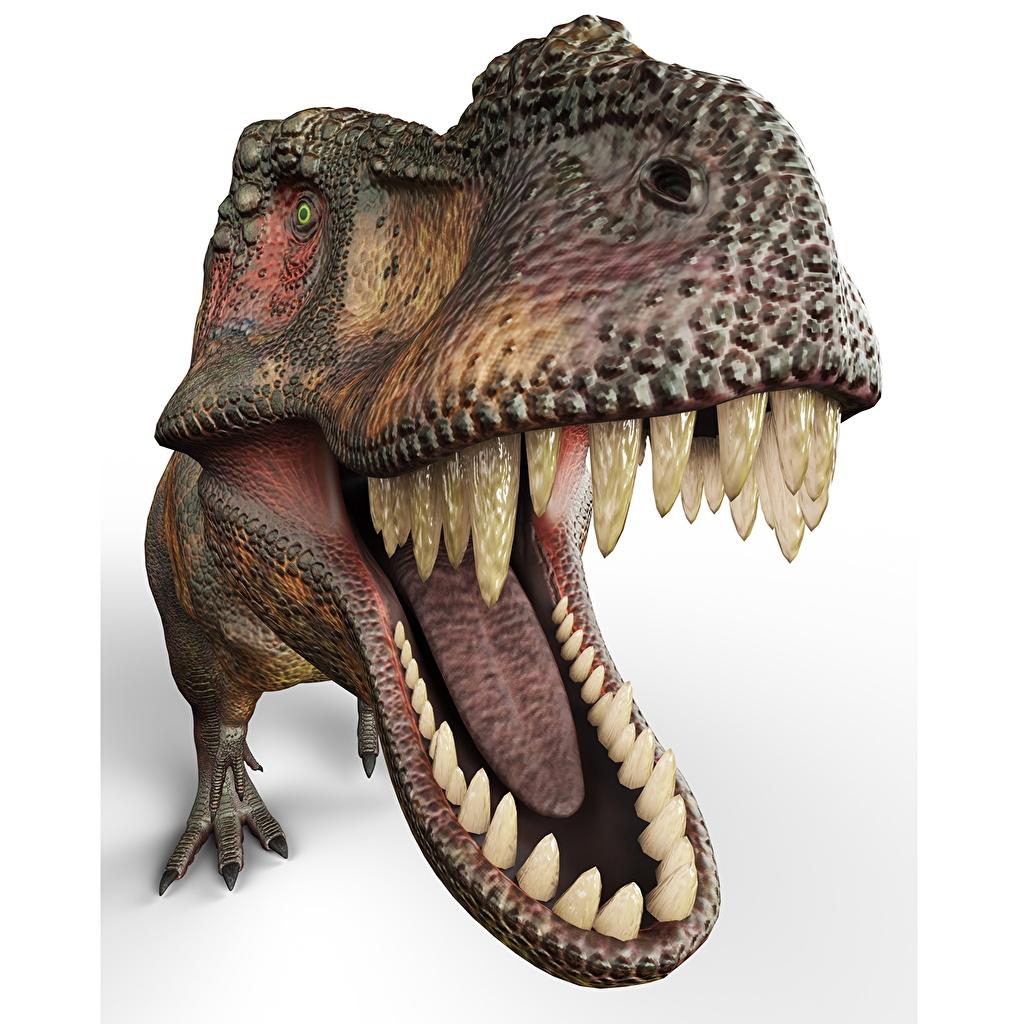 Desktop Wallpapers Tyrannosaurus rex Dinosaurs 3D Graphics Roar Teeth animal Ancient animals angry Animals