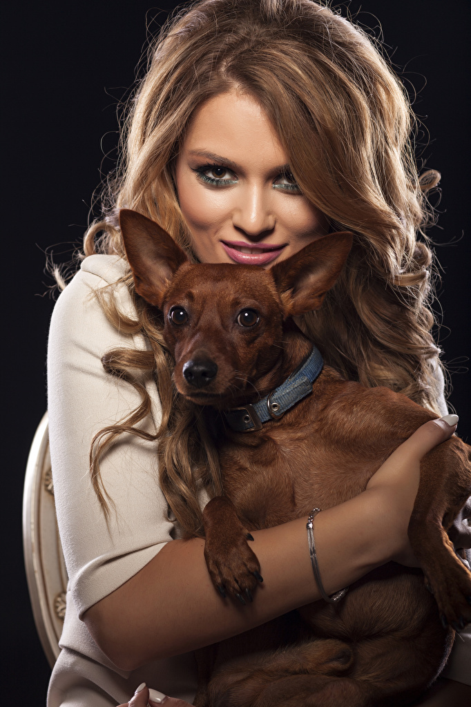 Bilder Chihuahua Hunde Braunhaarige Haar Mädchens Tiere Starren Braune Haare Blick