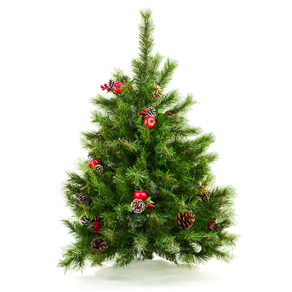 Photos New year Christmas tree Balls Conifer cone White background Christmas New Year tree Pine cone
