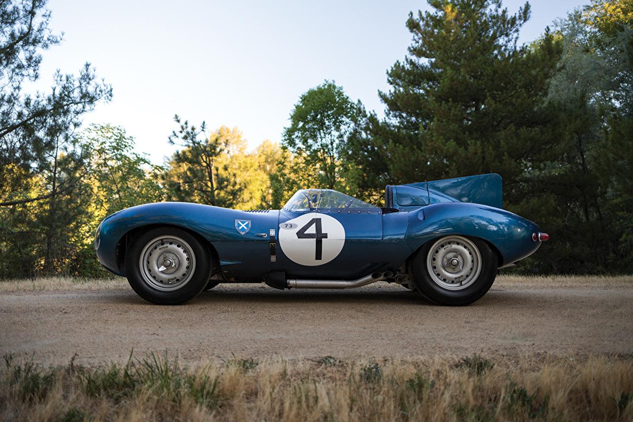 Photos Jaguar 1955-56 D-Type Short Nose with stabilisation fin Blue Retro Side Metallic automobile vintage antique Cars auto