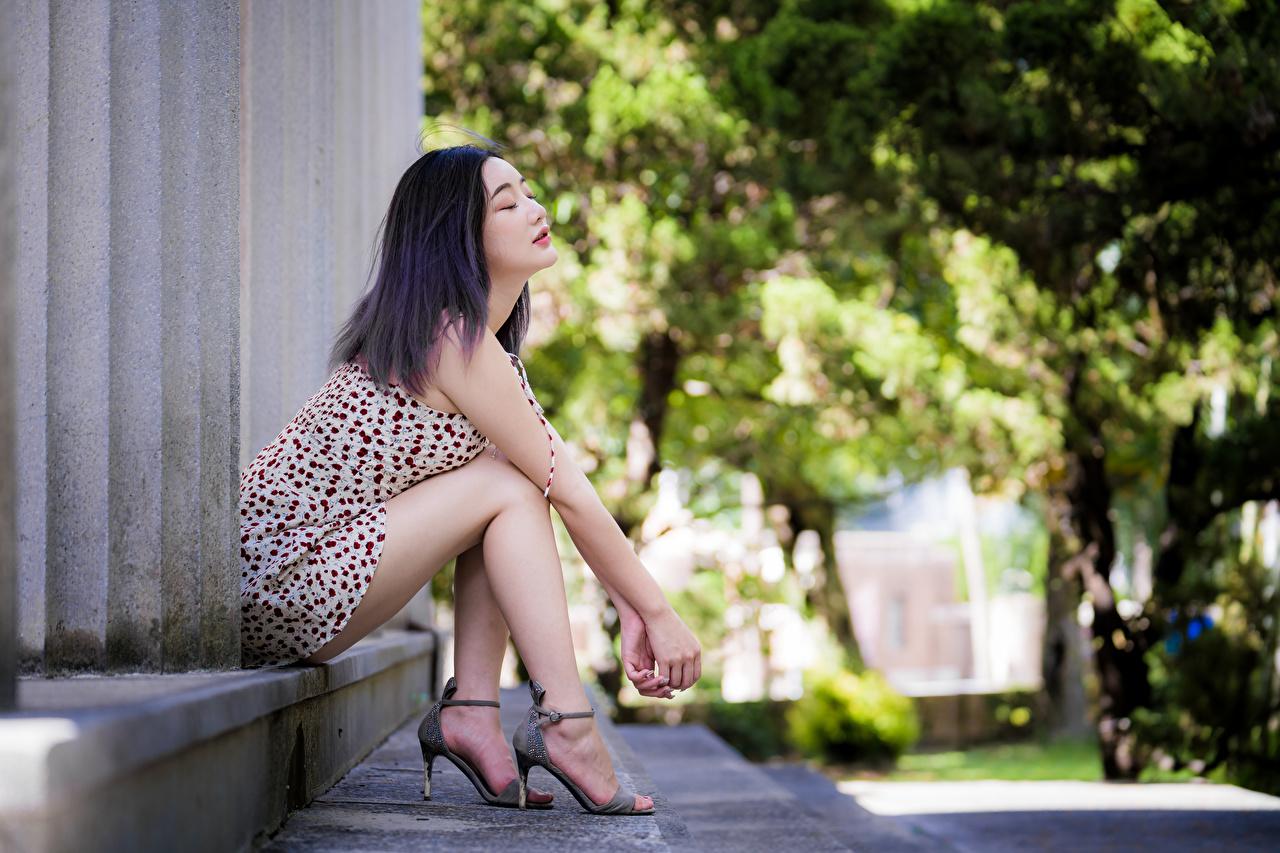 Fotos von Mädchens Bein Asiaten sitzen Kleid junge frau junge Frauen Asiatische asiatisches sitzt Sitzend
