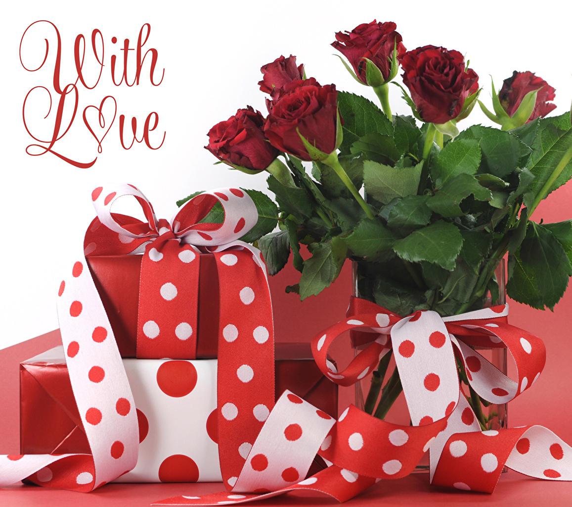 Fotos Valentinstag englischer Rosen dunkelrote Wort Blumen Geschenke Band Englisch englische englisches Rose Bordeauxrot burgunder Farbe text Blüte