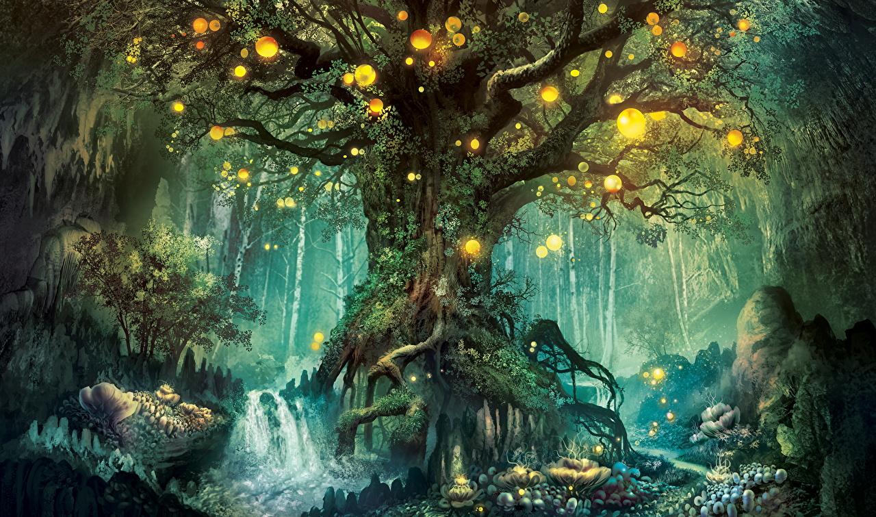 壁紙 幻想的な世界 森林 木 ファンタジー ダウンロード 写真