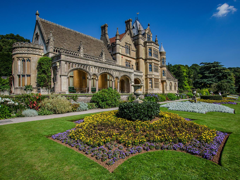 Immagini Inghilterra Tyntesfield Dimora Tappeto erboso Città edificio Cespugli Disegno mansion pelouse Prato rasato La casa Arbusti