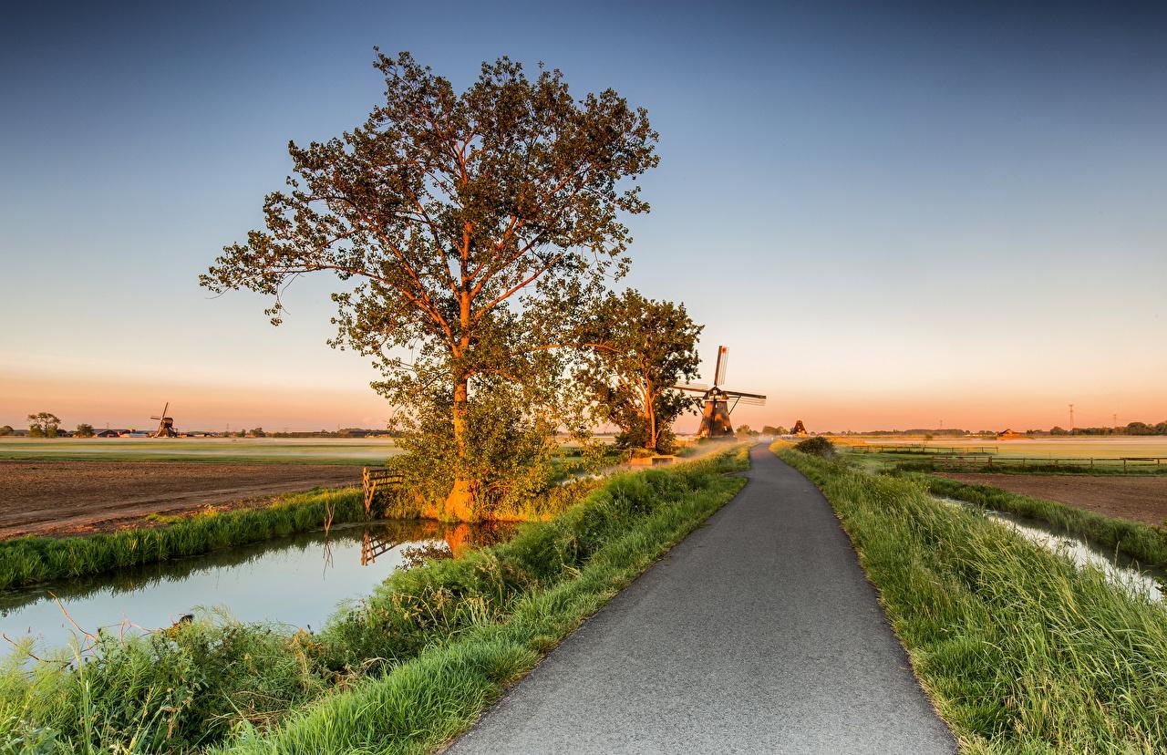 Images Netherlands Mill Alblasserwaard Nature Roads Fields Trees windmill windmills