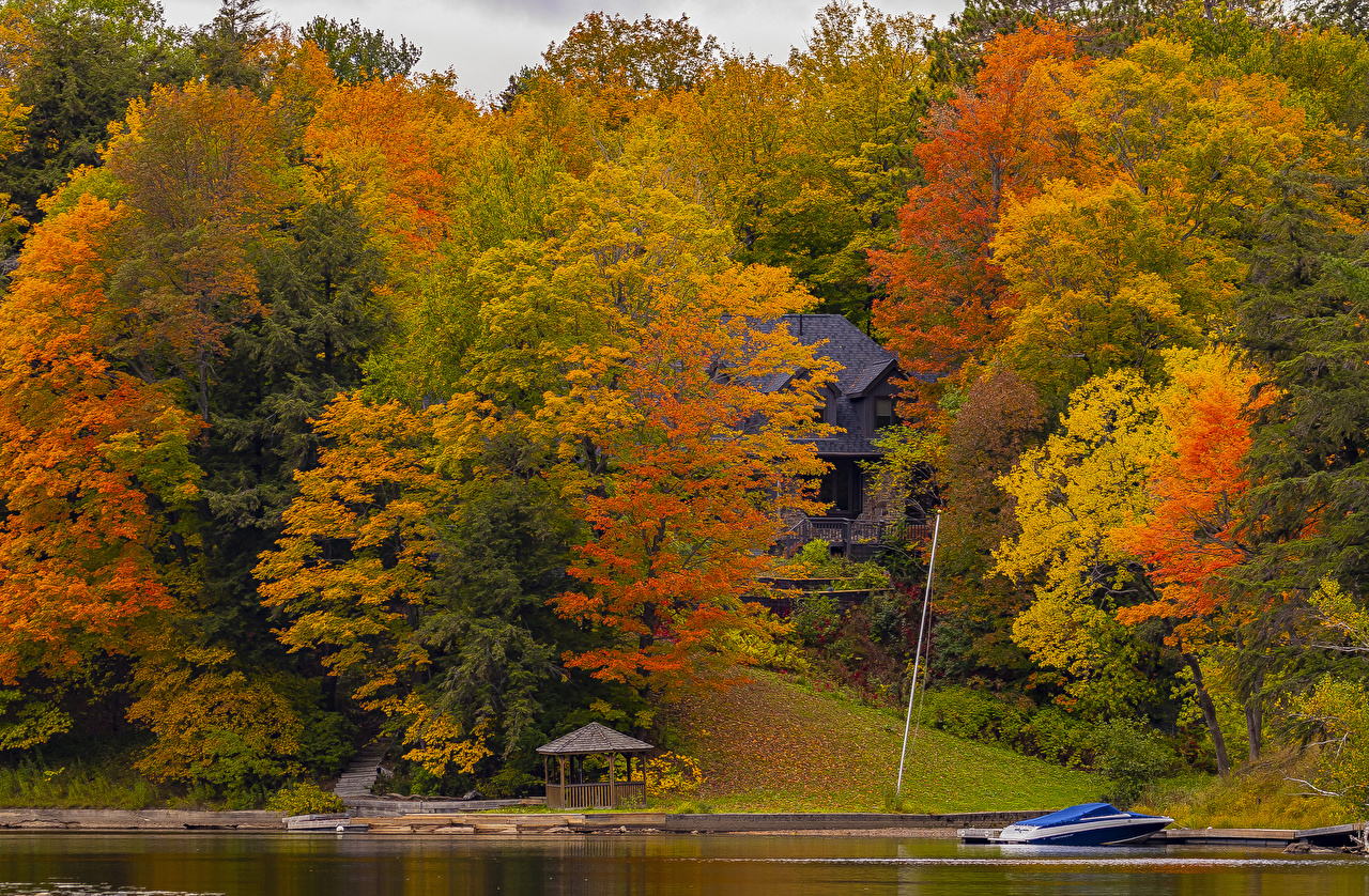 Pictures Canada Huntsville, Ontario Multicolor Autumn Nature park Marinas Trees Houses Parks Pier Berth Building