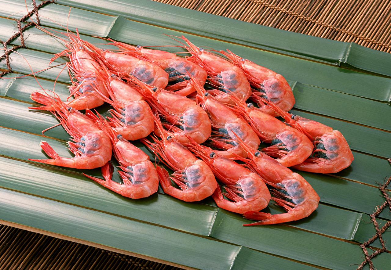 Fotos von Garnelen das Essen Viel Großansicht Caridea Lebensmittel hautnah Nahaufnahme