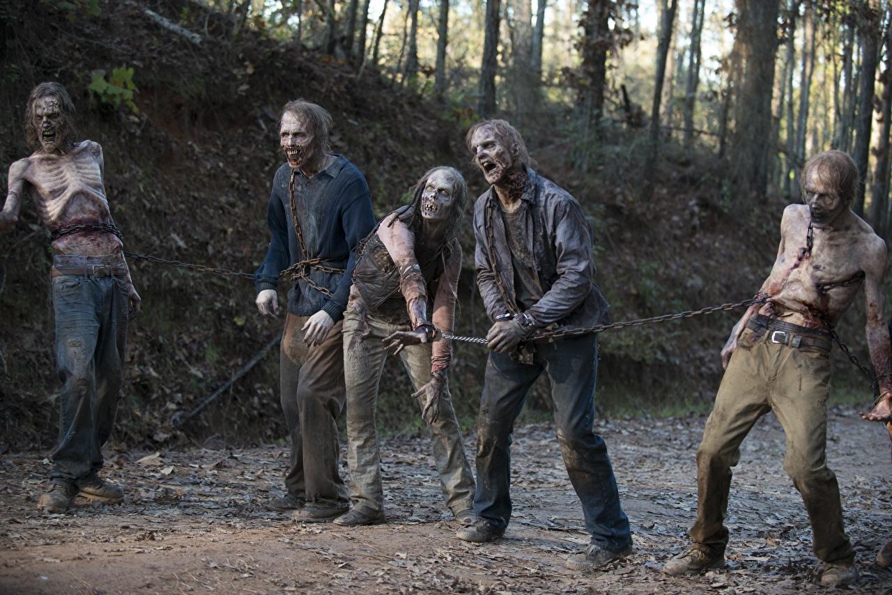 Wallpaper The Walking Dead TV Zombie Season 6 film Chain Movies