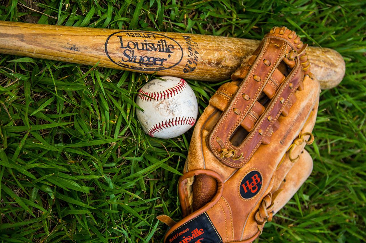 壁紙 野球バット 草 スポーツボール 手袋 スポーツ ダウンロード