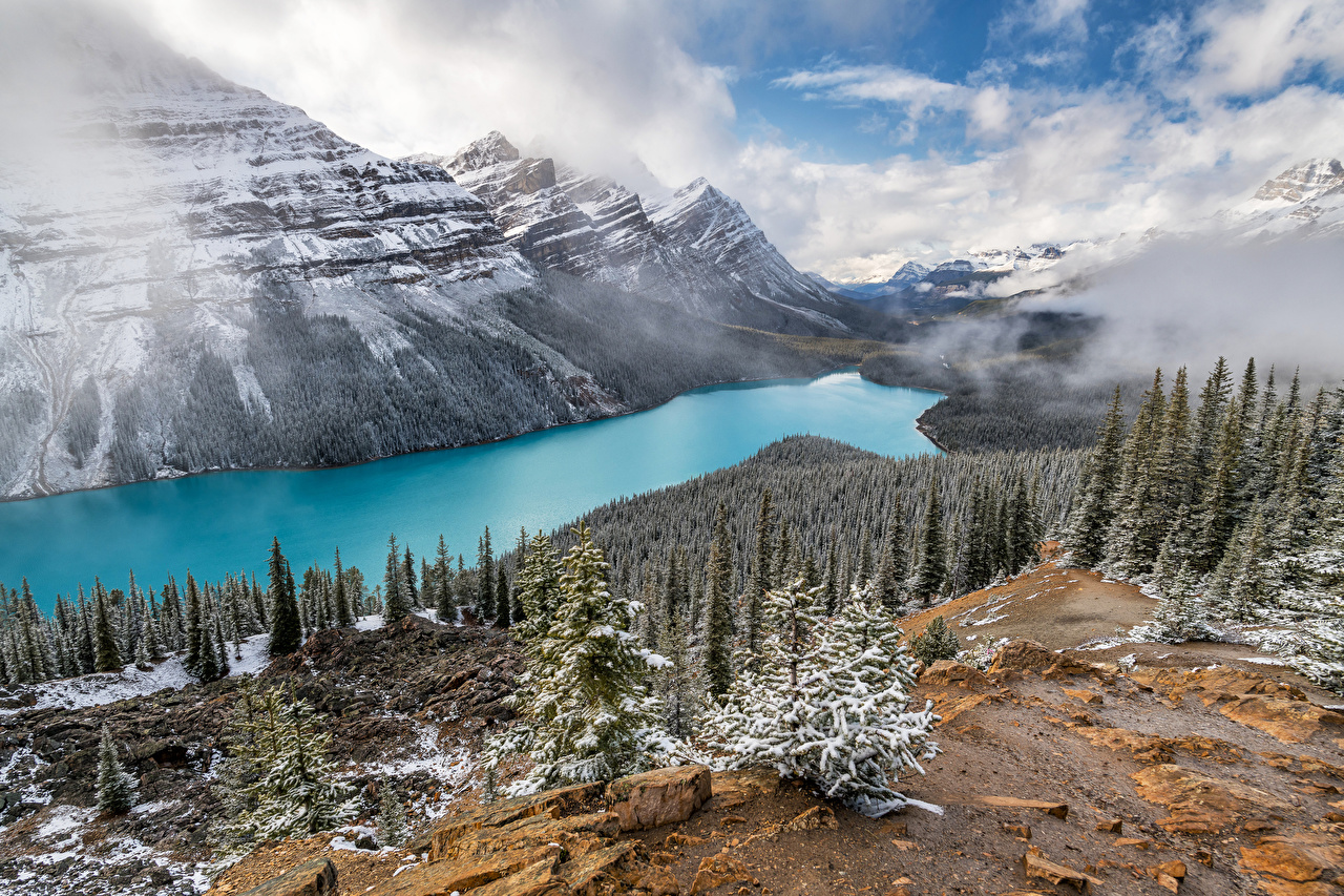 Photos Canada Peyto Lake, Alberta Nature mountain Lake landscape photography Trees Clouds Mountains Scenery