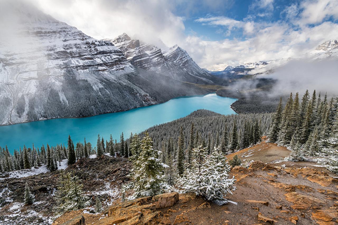 Bilder von Kanada Peyto Lake, Alberta Berg Natur See Landschaftsfotografie Wolke Bäume Gebirge