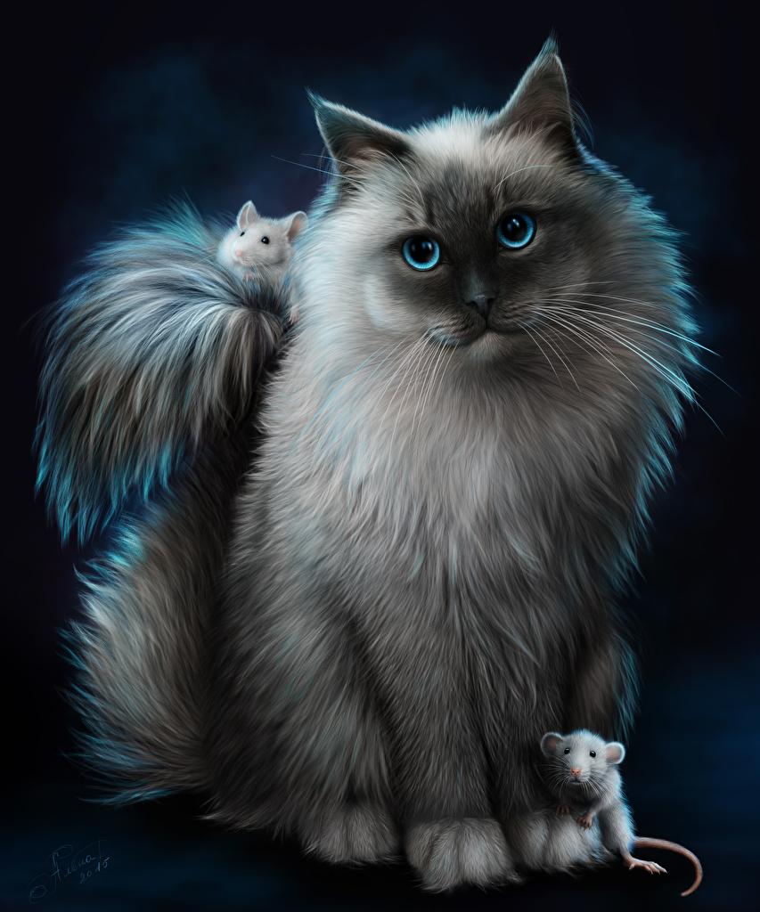 Обои кошки. Животные foto 10