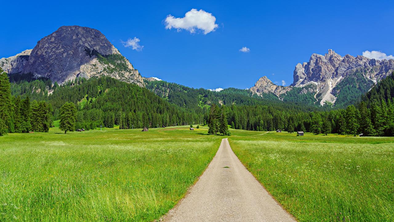 Foto Alpen Italien Trentino-Alto Adige Natur Gebirge Wege Acker Landschaftsfotografie Berg Felder Straße