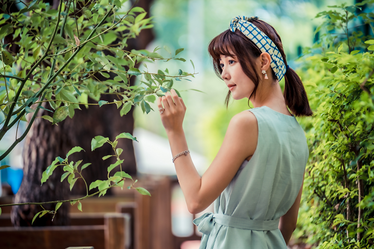 Fotos von Blattwerk Braunhaarige Mädchens Asiatische Ast Blatt Braune Haare junge frau junge Frauen Asiaten asiatisches