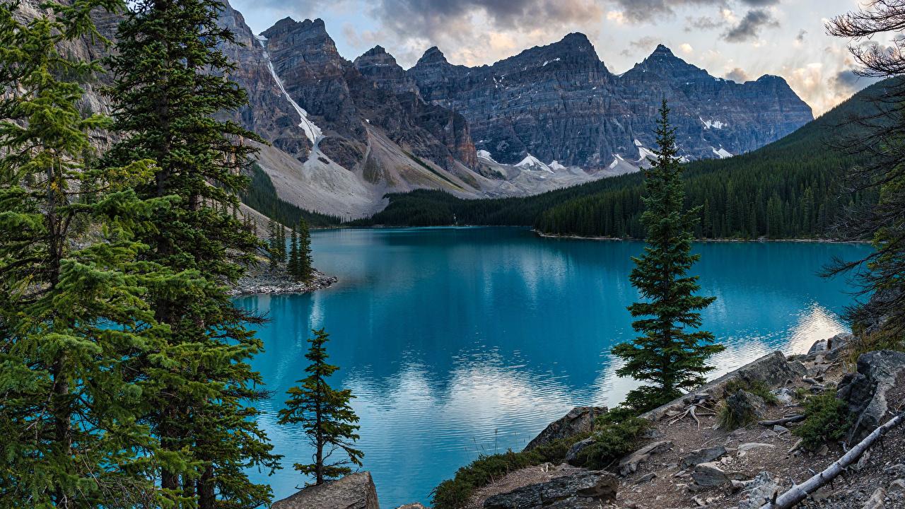 Picture Banff Canada Moraine Lake, Alberta Nature Mountains park Lake Trees mountain Parks