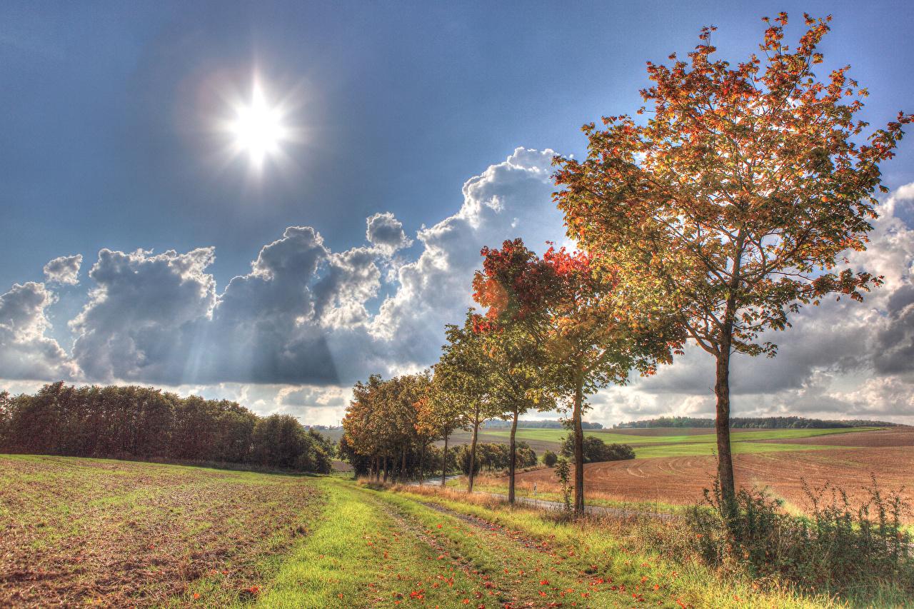 Fotos von Deutschland Illerich Natur Sonne Herbst Acker Himmel Bäume Felder