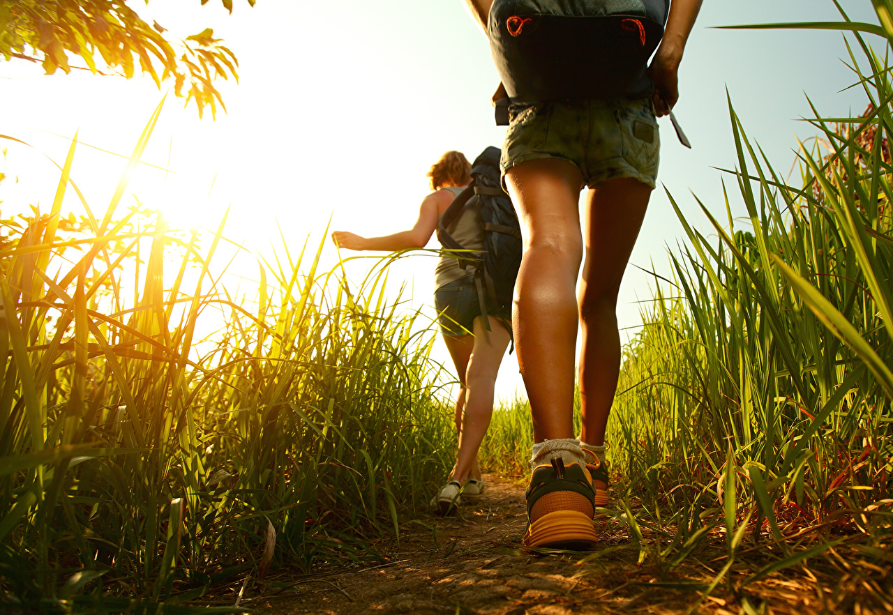 Pictures Legs Grass