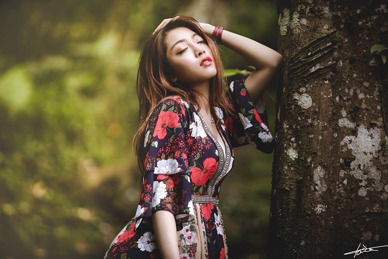 Photos Brown haired Bokeh posing young woman Asiatic Trunk tree Hands gown blurred background Pose Girls female Asian frock Dress