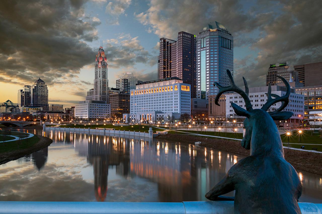 Wallpaper Deer USA Columbus Ohio Rivers night time Street lights Houses Cities Sculptures river Night Building