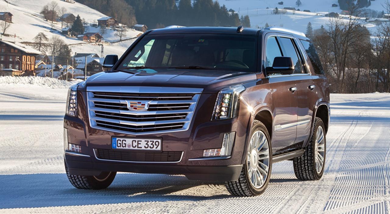 Foto Cadillac SUV Escalade, Platinum, EU-spec, 2015 Vorne automobil Sport Utility Vehicle auto Autos