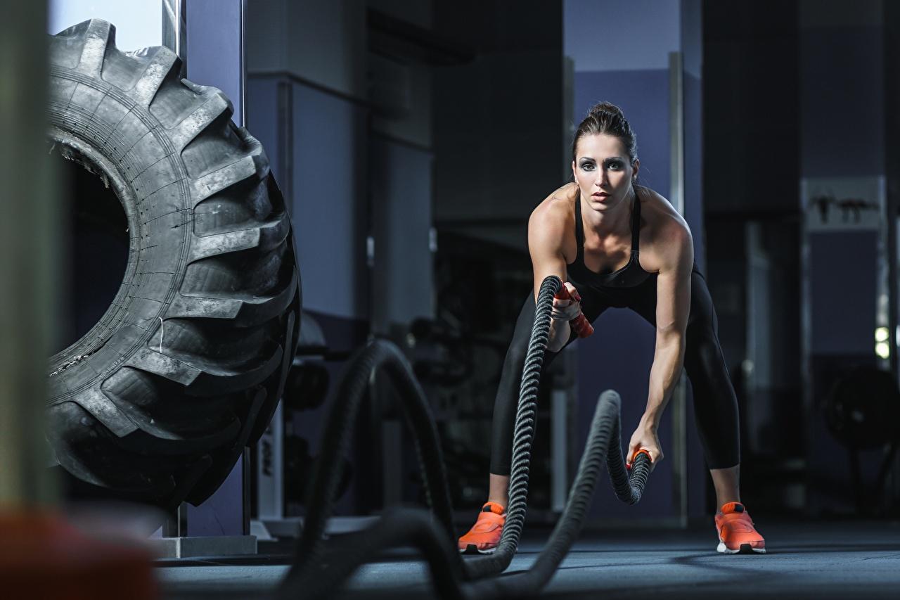 Bilder Trainieren Fitnessstudio rope Fitness junge frau sportliches Turnhalle Körperliche Aktivität Sport Mädchens junge Frauen