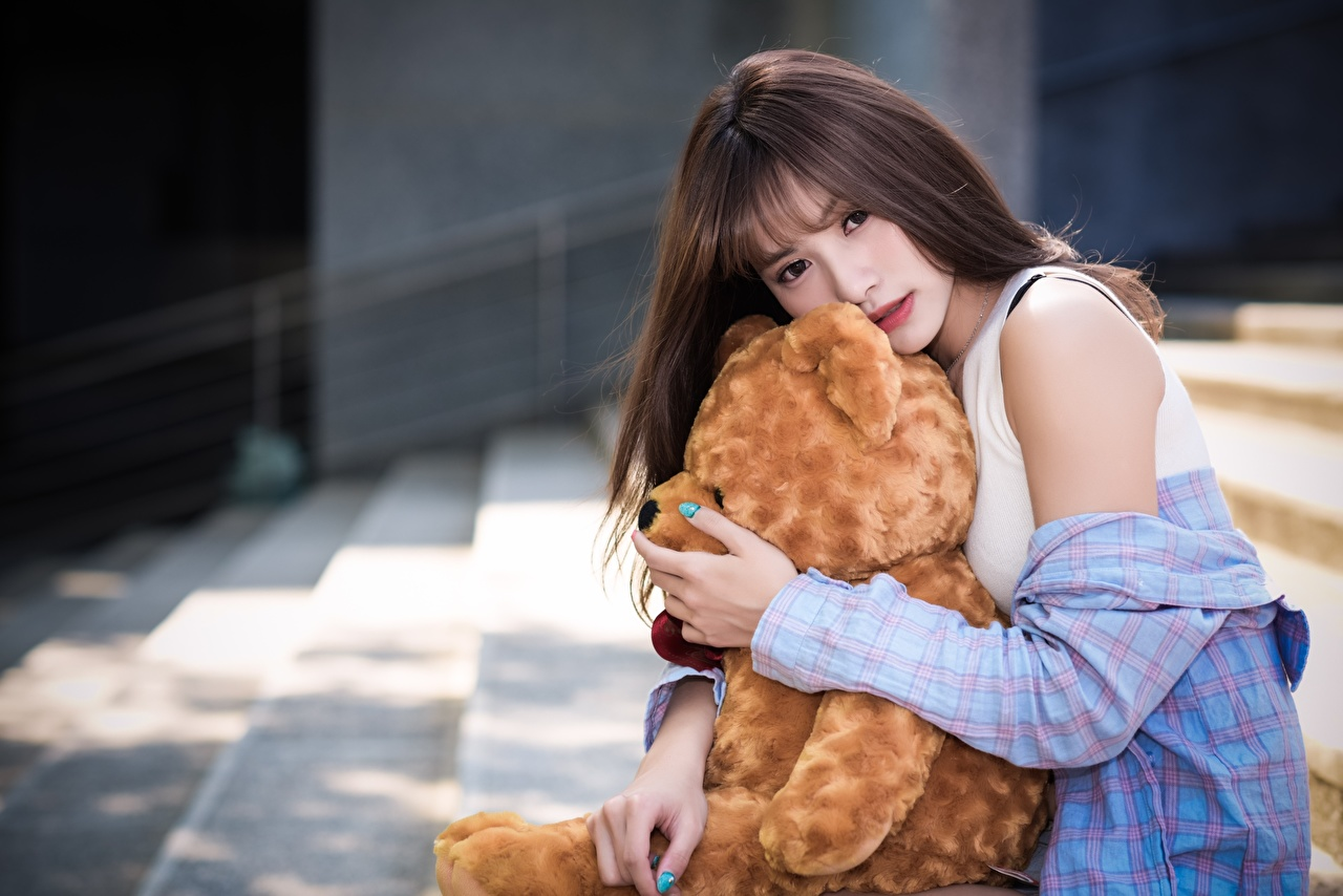 Pictures Brunette girl Bokeh young woman Asian Teddy bear Hands Glance blurred background Girls female Asiatic Staring