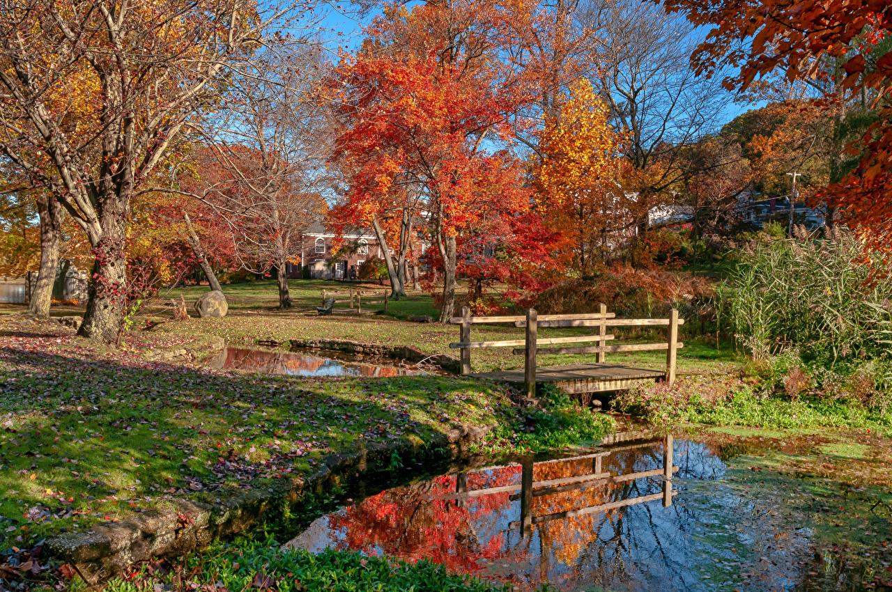 Photo New York City USA Gerry Park Roslyn Autumn Nature Bridges park Pond Trees bridge Parks