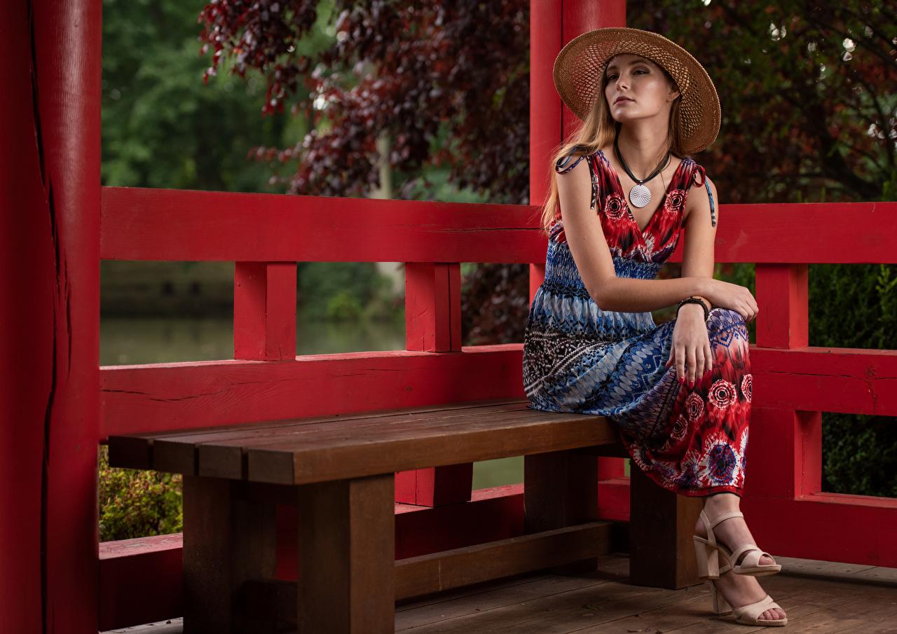 Image Bench Magdalena Warszawa  Glance frock Sitting female Hat Staring sit gown Dress Girls young woman