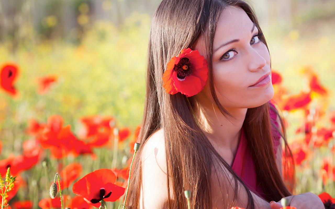 Fotos Braune Haare Haar Mädchens Mohn Starren Braunhaarige Blick