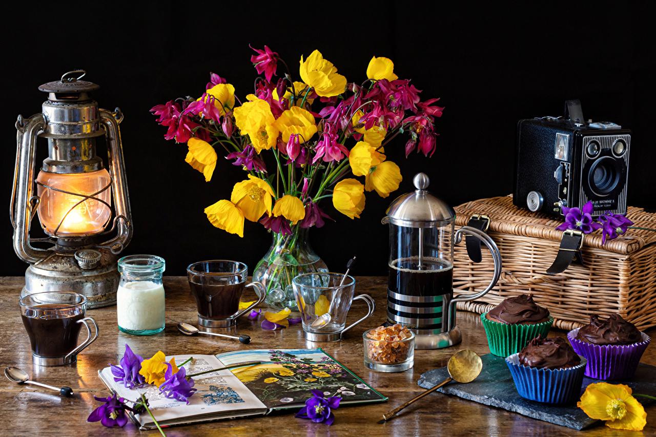 Fotos von Fotoapparat Corydalis Kaffee Cupcake Petroleumlampe Blütenblätter Blüte Trinkglas Christrosen Vase Lebensmittel Stillleben kronblätter Blumen Nieswurz Lenzrosen Schneerosen das Essen