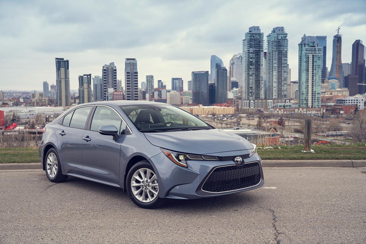 Wallpaper Toyota 2020 Corolla XLE Sedan Grey Cars Metallic gray auto automobile