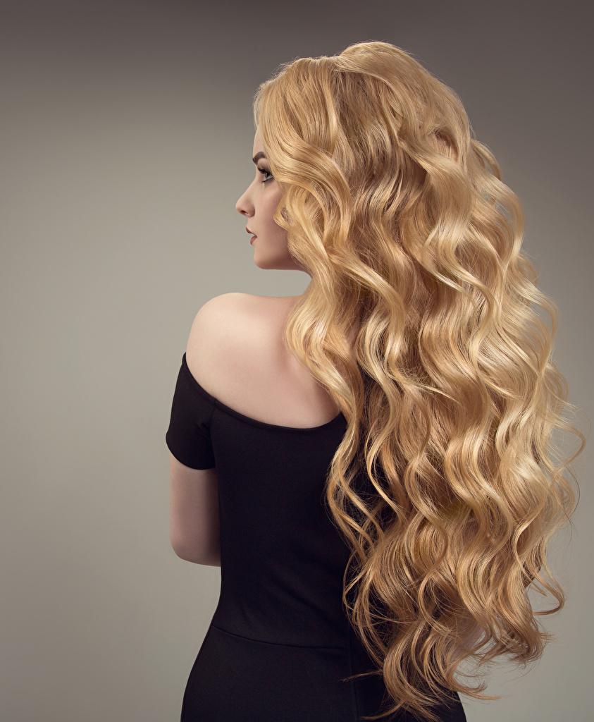 Bilder von Blondine Haar Mädchens Hinten Grauer Hintergrund Blond Mädchen