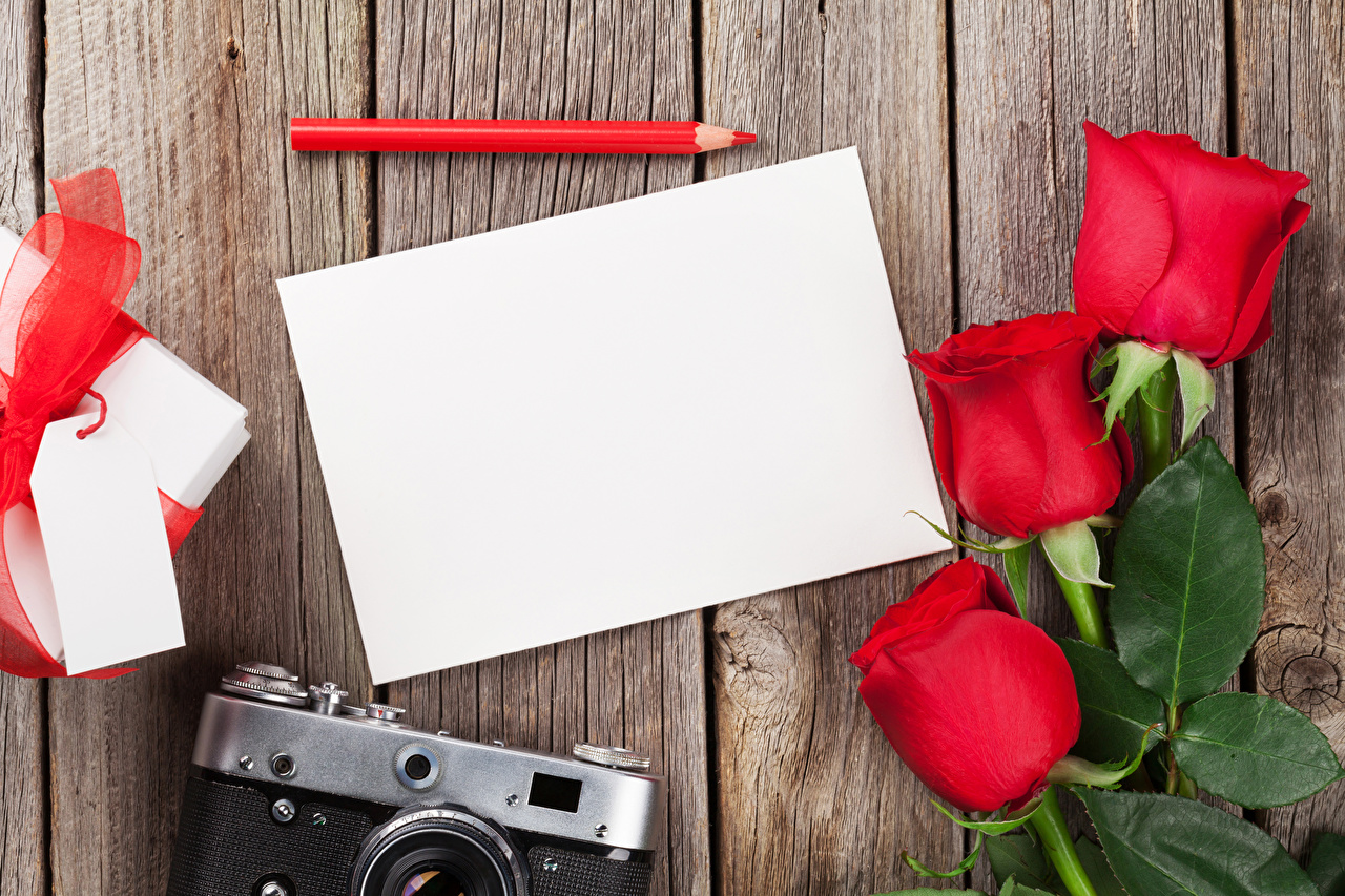 Image Pencils Sheet of paper Roses Flowers Three 3 Template greeting card Holidays Wood planks Boards