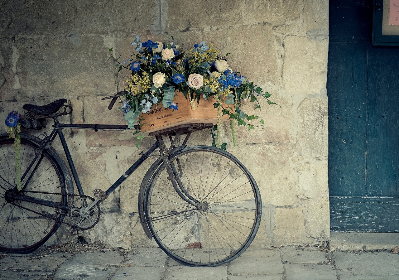 Wallpaper Bicycle rose Flowers Old walls bike bicycles Roses flower Wall