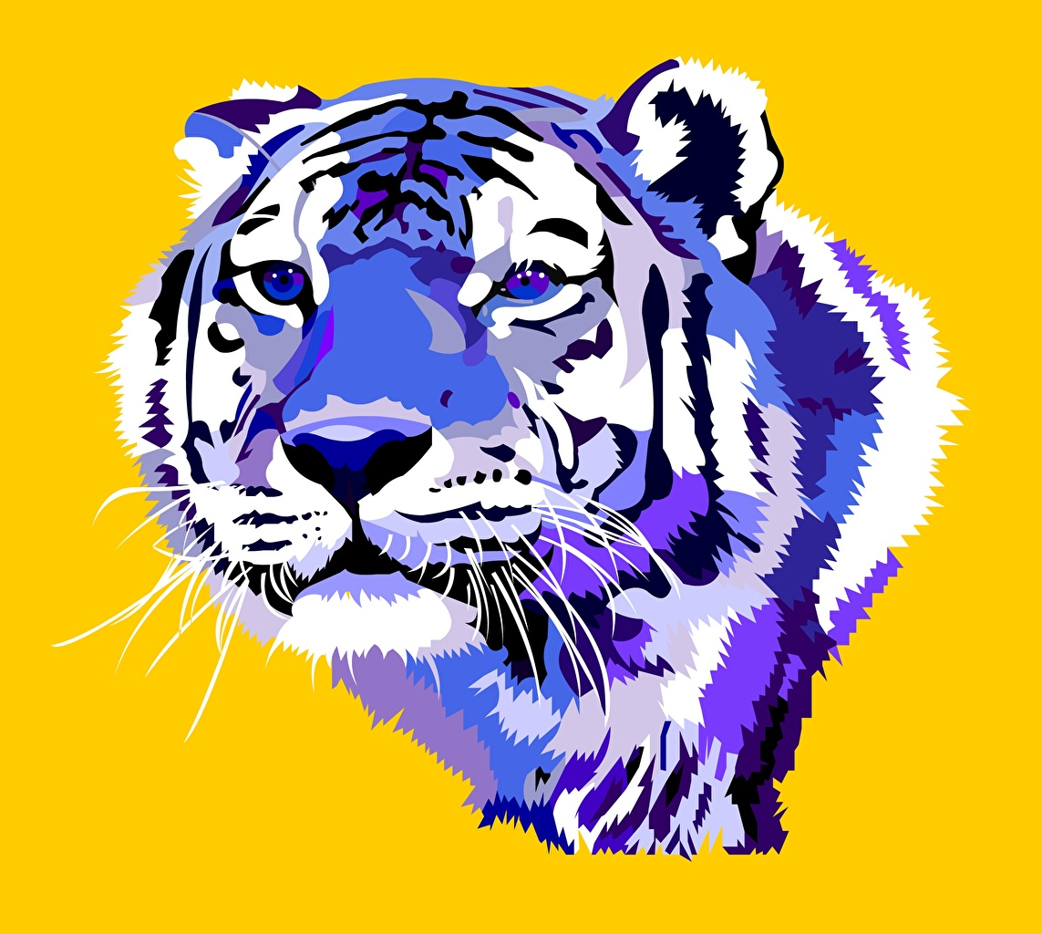 Desktop Wallpapers Tigers Big cats Whiskers Snout Staring Animals Painting Art Vector Graphics tiger Glance animal