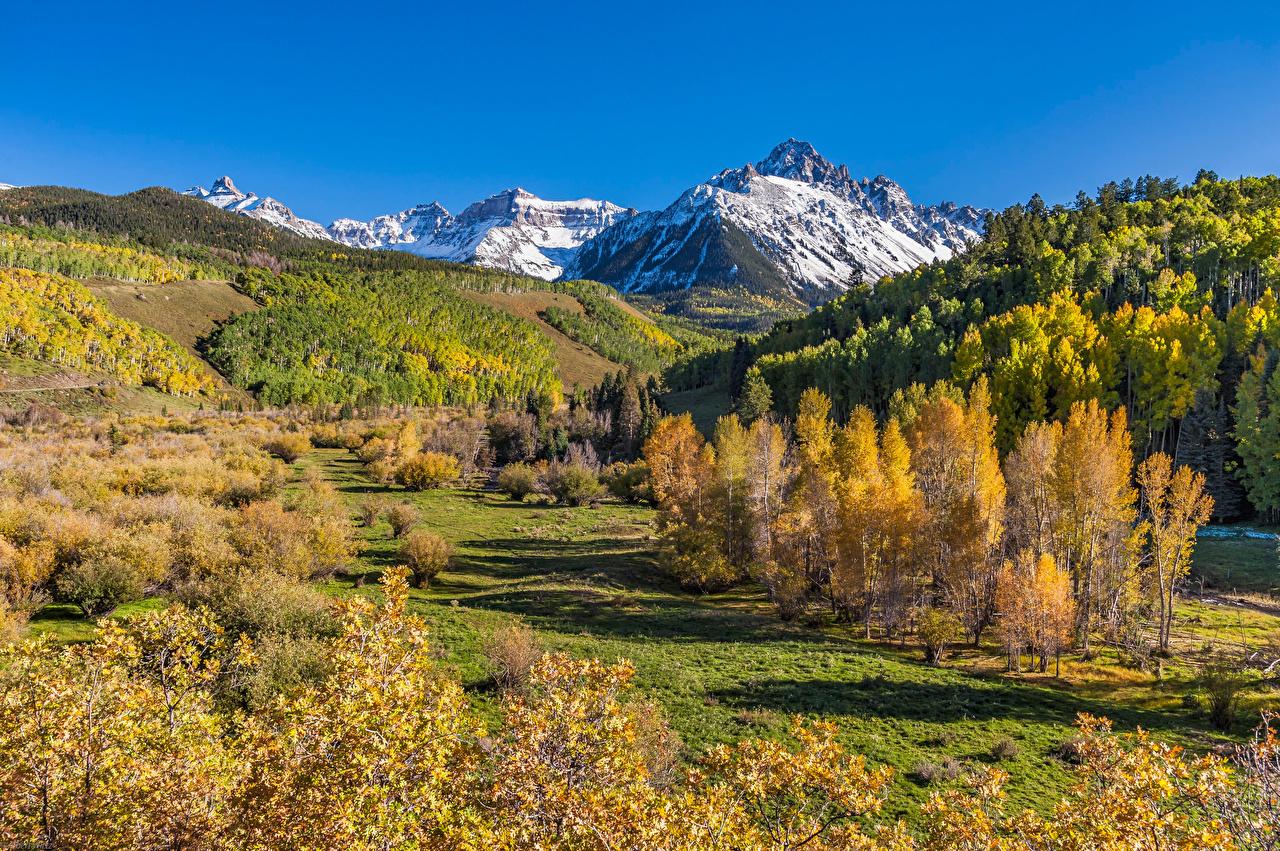 Photos USA Mount Sneffels Nature Autumn Mountains Trees mountain