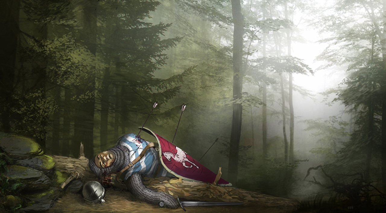 Wallpaper Knight Shield Middle Ages Dead Cadaver Corpse arrows Fantasy forest Wooden arrow Forests