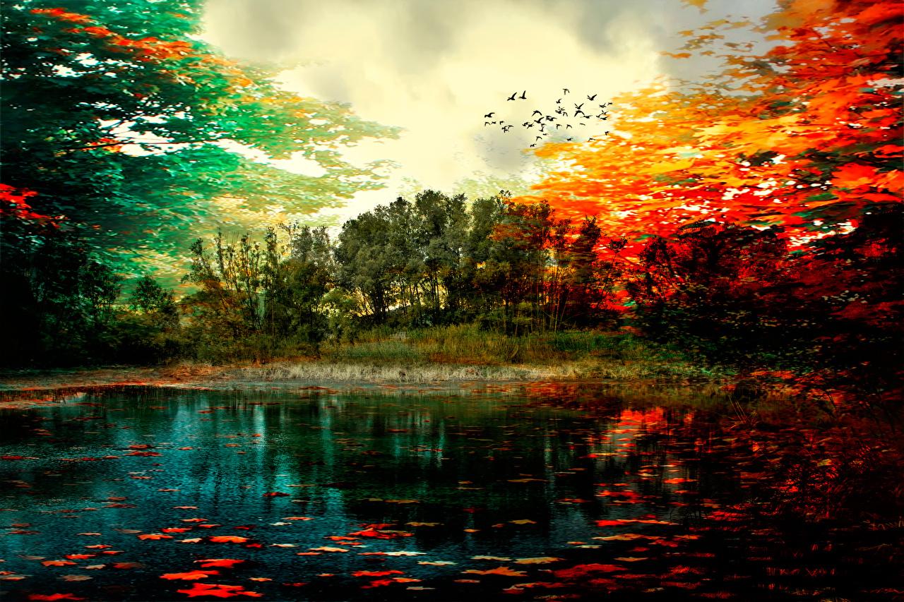 壁紙 秋 絵画 湖 風景写真 Colors Of Autumn 自然 ダウンロード
