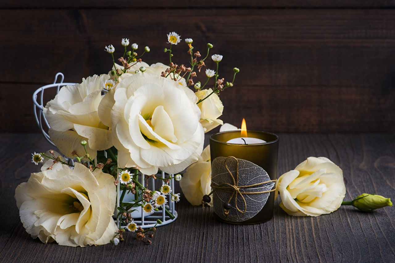 Bilder Blumen Eustoma Trinkglas Kerzen Blüte Lisianthus