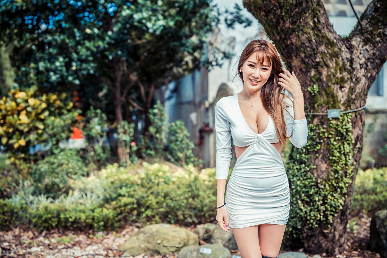 Fotos Braune Haare Lächeln Bokeh dekolletee Mädchens Asiaten Kleid Braunhaarige unscharfer Hintergrund Dekolleté junge frau junge Frauen Asiatische asiatisches