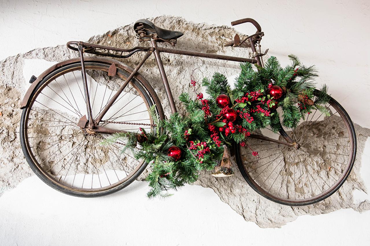 Fotos von Neujahr fahrräder Ast Beere Kugeln Design Fahrrad