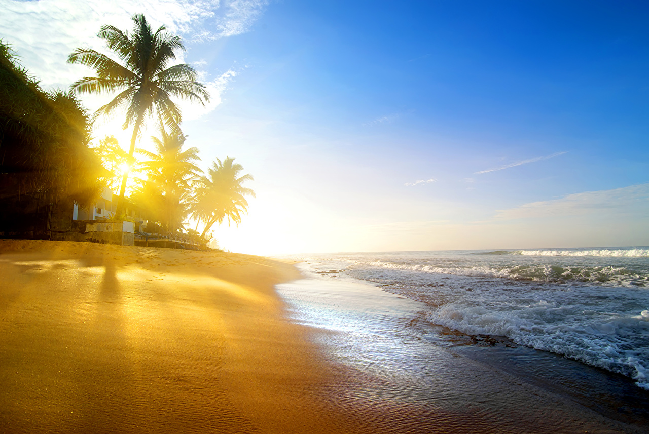 Pictures Rays of light Beach Nature Palms Waves Tropics Coast beaches palm trees