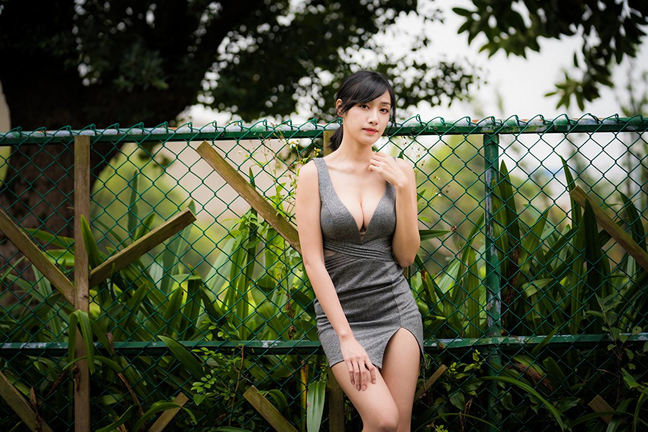 Bilder von Brünette Dekolleté junge frau Asiaten Hand Starren Kleid dekolletee Mädchens junge Frauen Asiatische asiatisches Blick